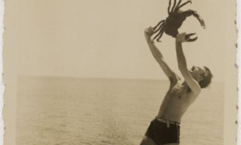 Dalí at the beach with a crab