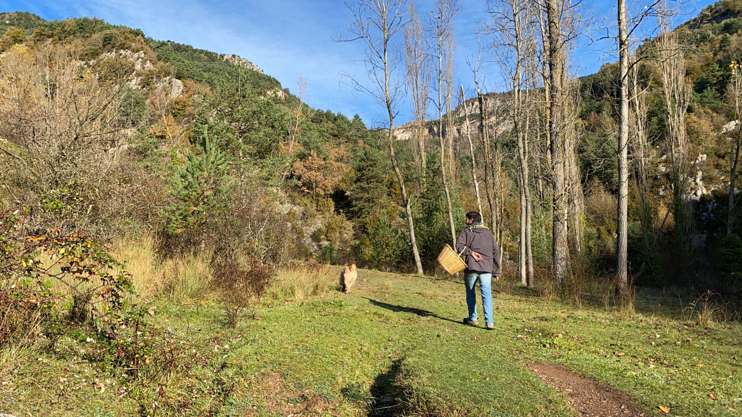Aniol mushroom hunting in the Pyrenees with his faithful dog Whiskey (by Alan Ruiz Terol)