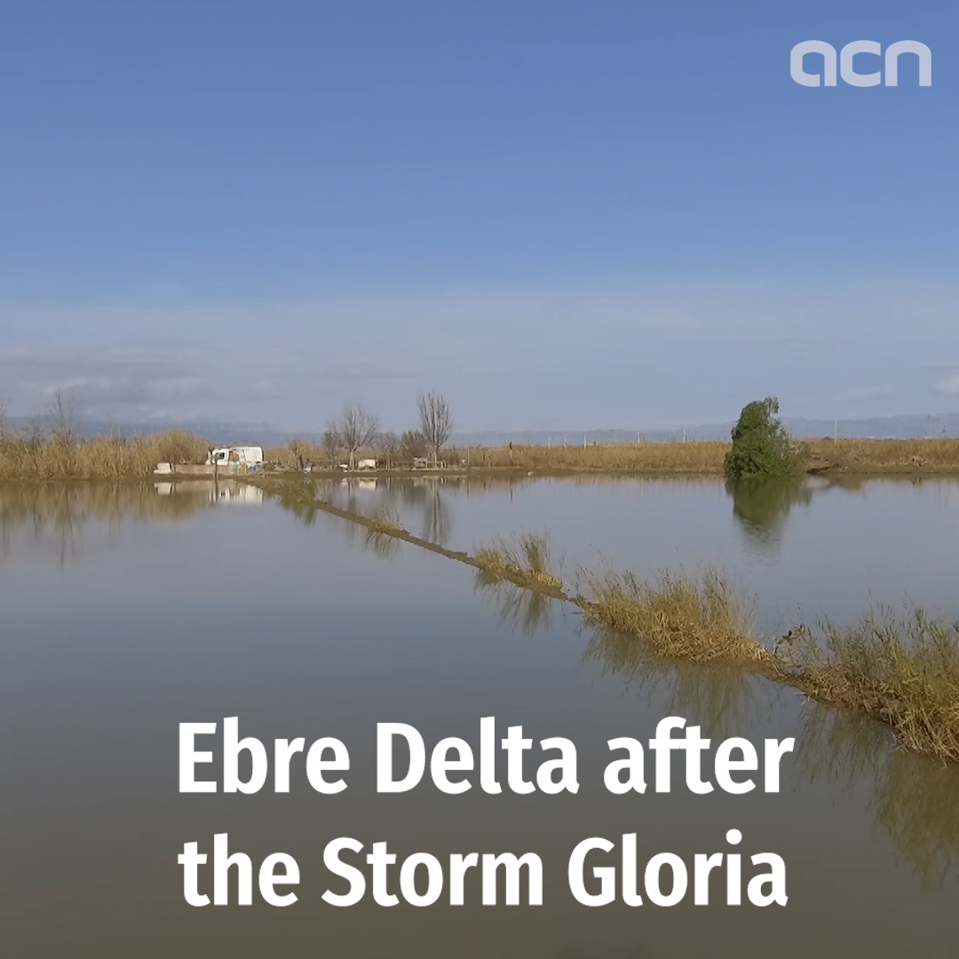 Drone footage shows flooding in Ebre delta