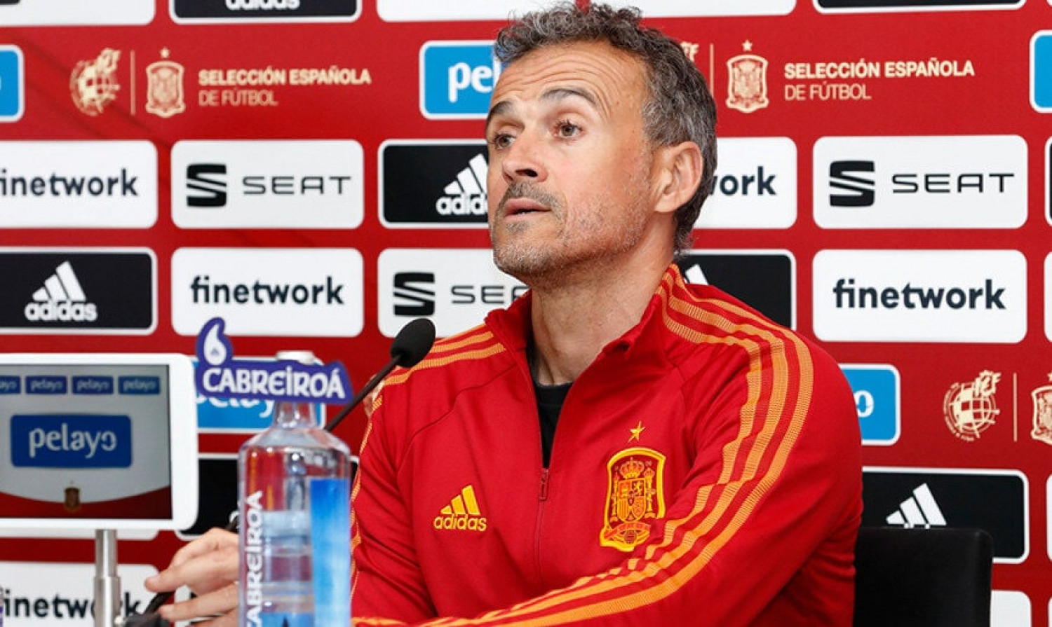 Spanish national team manager Luis Enrique photographed during a press conference (image from Spanish Football Federation)