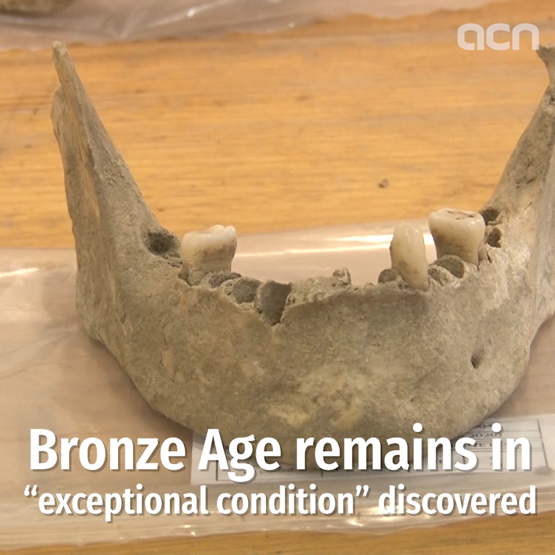 Bronze Age remains in 'exceptional condition' discovered