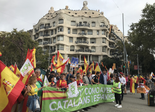 Far-right Vox supporters at Spain's 2019 National Day rally in Barcelona (by Cristina Tomàs White)