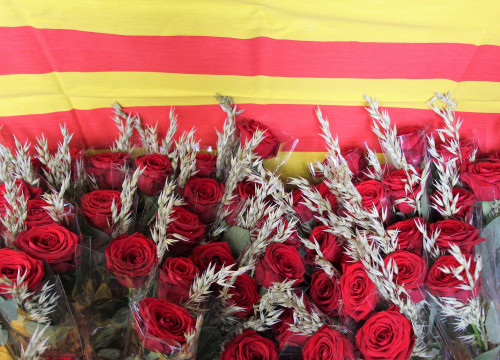 Roses are one of Sant Jordi's key elements (by ACN)