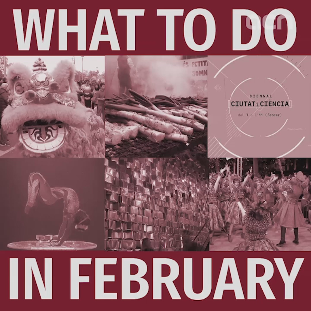 What to do in February?