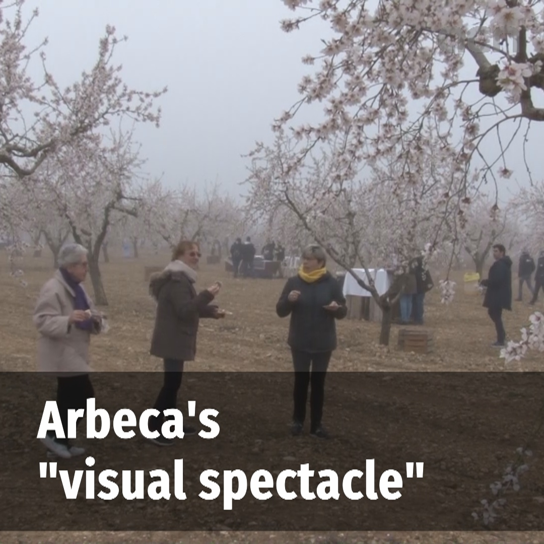 "Arbeca's ""visual spectacle"""