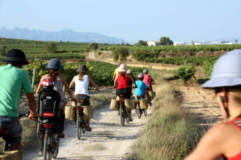 Bike tours across the Penedès wine region (by J. Polinario)