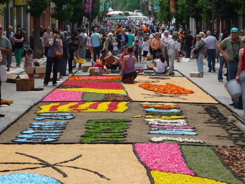 One of Arbúcies flower carpets (by J. Macià)