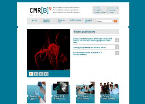 The website of the Barcelona's Centre for Regenerative Medicine (by CMRB / ACN)