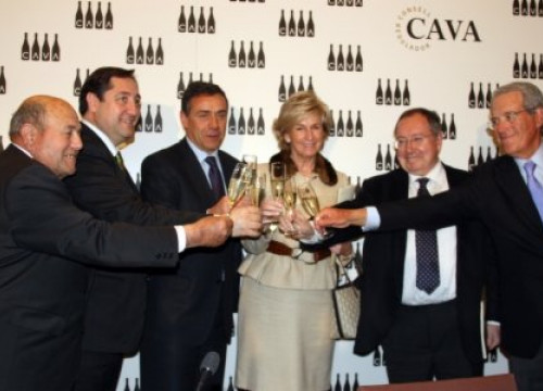 The Cava's Regulation Council released the 2010 sales figures (by A. Recolons)