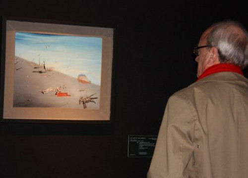 A man looking at the painting 'Honey is sweeter than blood', by Dalí (by L. Pous)