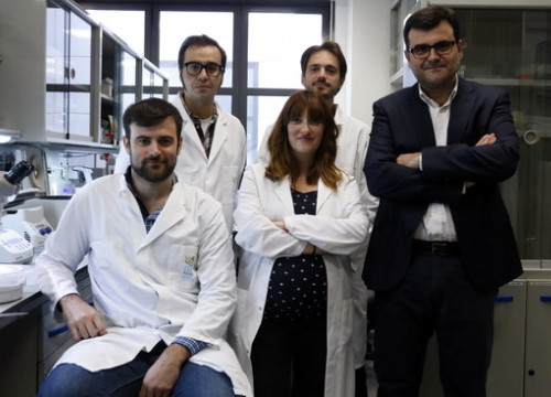 IRB Barcelona's researchers team (by Laura Fíguls)