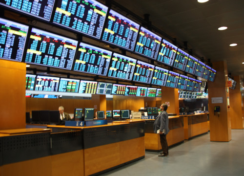 An investor observes the Barcelona Stock Exchange (by ACN)