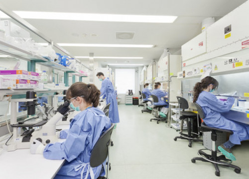 Image of an IrsiCaixa lab on February 2017 (by IrsiCaixa/Jordi Anguera)