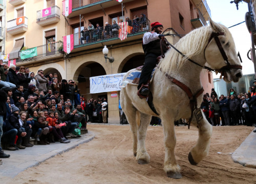 A white horse ridden by a Tres Tombs participants in traditional Catalan dress in the town of Valls on January 14 2018 (by Núria Torres)