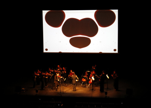 The projection of the concert-projection of 'Animation for Vivaldi's Four Seasons,' performed by the Symphonic Julià Carbonell Orchestra (OJC) at the Animac inauguration on February 22 2018 (by Laura Cortés)
