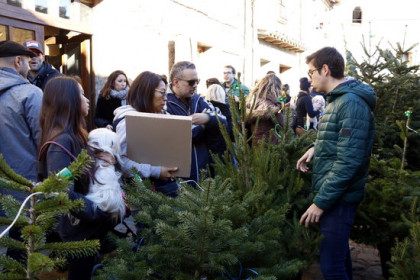 Some people visiting the Christmas tree fair in Espinelves on December 2, 2018 (by Laura Busquets)