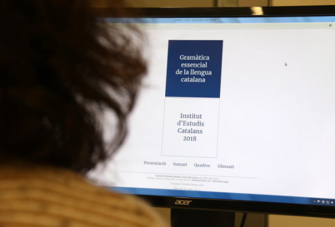 A person looks at an online course of Catalan grammar (by Violeta Gumà)