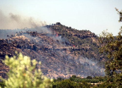 Flames showing in the wildfire affecting more than 4,000 hectares in southern Catalonia. (Photo: Anna Ferràs)