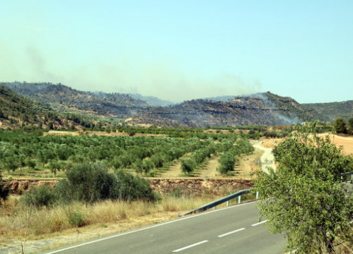 Image of the southern Catalonia wildfire burning in the distance. (Photo. Anna Ferràs)