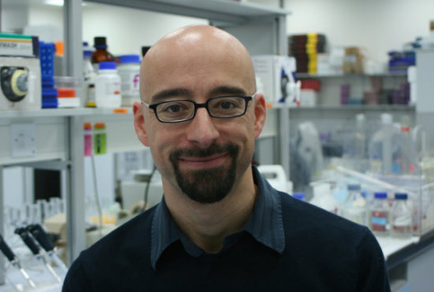 Image of the Catalan researcher Salvador Macip in the lab (by Yolanda Porter/macip.org)