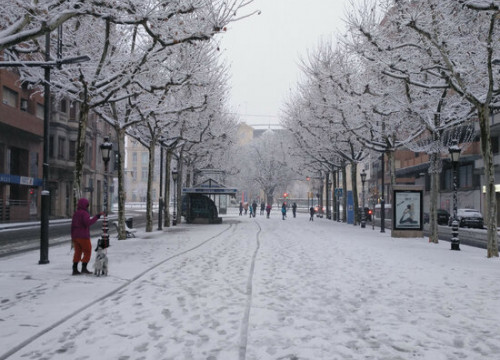 A snowy street in Lleida, January 9, 2021 (by Salvador Miret)