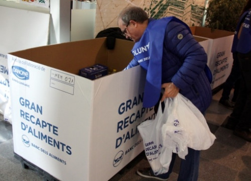 A volunteer working on Friday at the 'Gran Recapte' (by P. Solà)