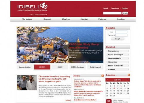 The IBIDELL's website, announcing the study (by IBIDELL / ACN)