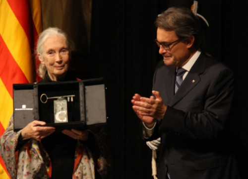 Jane Goodall receiving the Premi Internacional Catalunya award from the Catalan President, Artur Mas (by P. Francesch)