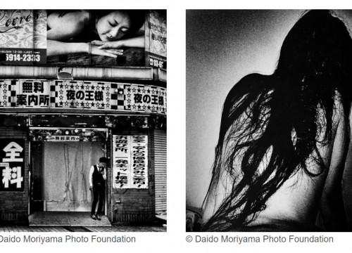 Screenshots from the Foto Colectania website of some of Daido Moriyama's photographs (images from the Daido Moriyama Photo Foundation)