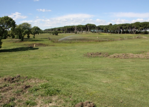 A recent image of the existing golf course, which has been maintained by AENA over the last years (by E. Romagosa)