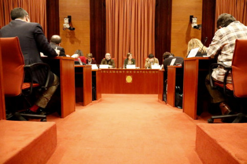 The Standing Committee of the Catalan Parliament has agreed to appeal the Spanish government's enforcement of Article 155 (by Rafa Garrido)