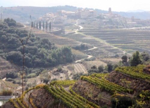 An image from the Priorat wine region near Gratallops (by A. Ferràs)