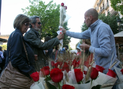The Day of Sant Jordi in Girona, in 2014 (by ACN)
