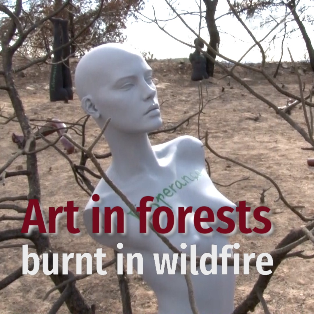 Art in forests burnt in wildfire