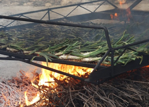 Calçots being cooked (by C. C. Salellas)