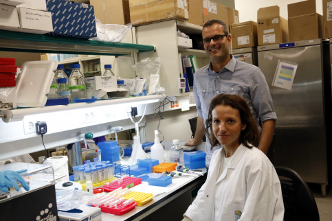 Leader of the IRB 'Cancer and Stem cells' team, Salvador Aznar Benitah and researcher Gloria Pascual, at their laboratory in Barcelona (by ACN)