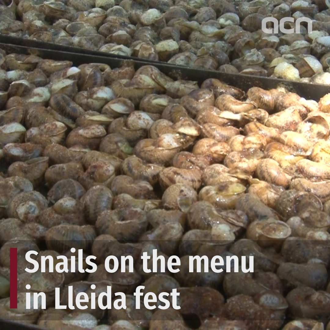 Snails on the menu in Lleida fest
