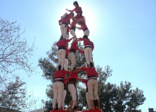 Dozens of women took part in the world record human tower