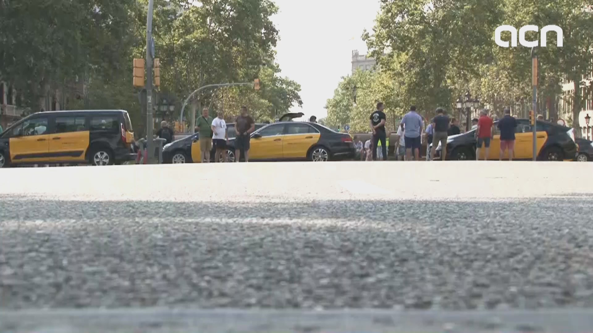 Barcelona taxi drivers on indefinite strike