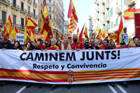 Unionist protesters in Barcelona on Spain's Constitution Day (by ACN)