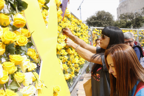Yellow roses are popular this year to show support for Catalan leaders either in jail or abroad (by ACN)
