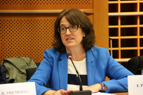 Elisenda Paluzie, the president of the Catalan National Assembly, in the European Parliament (by Blanca Blay)