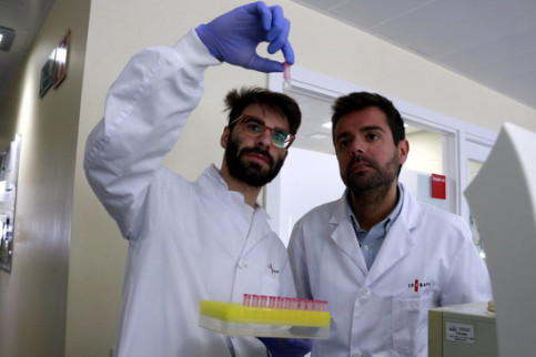 Head of liver vascular biology at the IDIBAPS research centre, Jordi Gracia-Sancho (right) observes a sample being showed to him by a researcher - Laura Fíguls