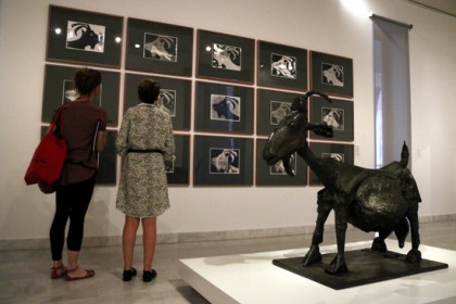Picasso's She-Goat sculpture, on display with accompanying photographs in the new photography exhibition in the Picasso Museum. (Photo: Pau Cortina)