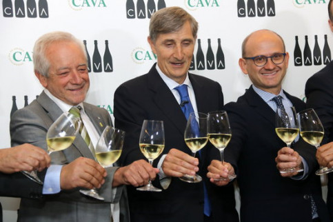 A cheers during the 2018 results presentation of the regulartory council of cava. (Photo: Gemma Sánchez)
