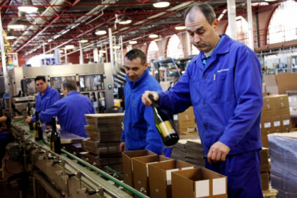 Freixenet workers packing cava bottles (by ACN)