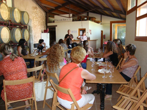 Tourists enjoy wine tasting during the new route in Garraf.