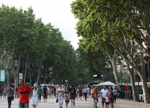 Les Rambles, in Barcelona (by Caitlin Smith)